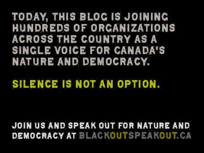 BLACKOUTSPEAKOUT