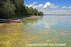 Mats-Pigeon Lake