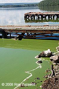 Gregoire Lake