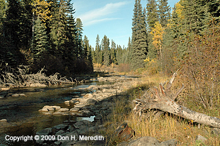 boreal river crossing