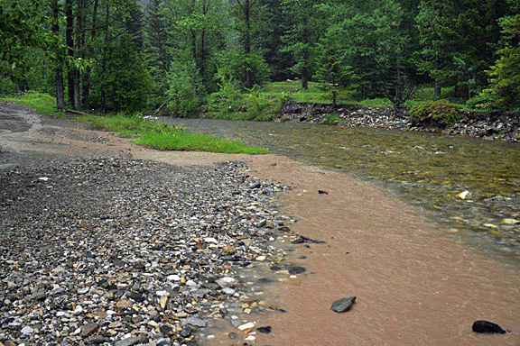 The mud OHVs create on trails often drains into streams where it impacts fish.
